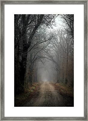 Fog Shrouded Lane  7861 Dp_2 Framed Print