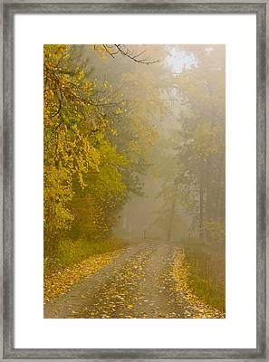 Foggy Autumn Morn Framed Print