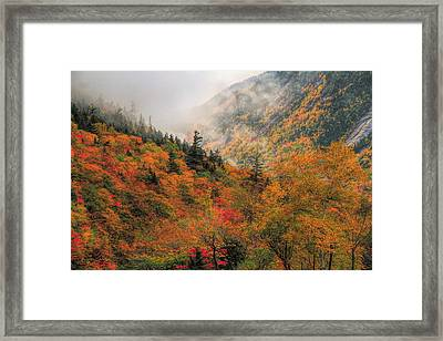 Foggy Autumn Morning In Crawford Notch State Park Framed Print