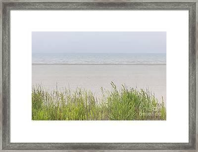 Foggy Beach Framed Print by Elena Elisseeva