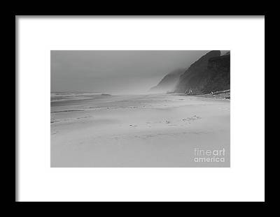 Driftwood Beach Fog Framed Prints