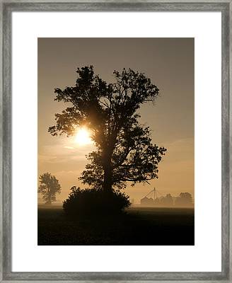 Foggy Country Morning Framed Print by Dan Sproul