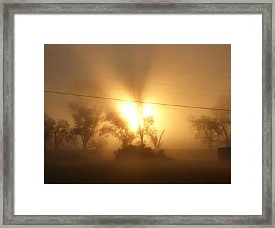 Heart In A Foggy Dawn Framed Print
