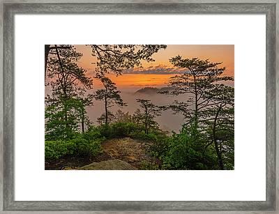 Foggy Dawn. Framed Print