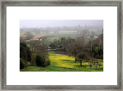 Foggy Day In Napa Framed Print by Gail Salituri