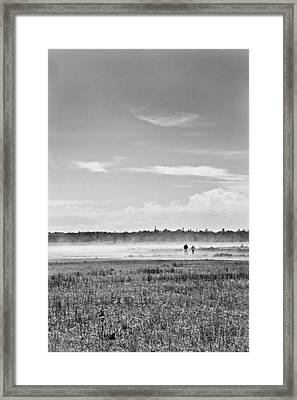 Foggy Day On A Marsh Framed Print
