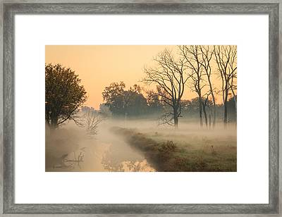 Foggy Fall Morning On Gary Avenue Framed Print