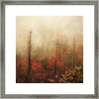 Foggy Fall On The Parkway Framed Print
