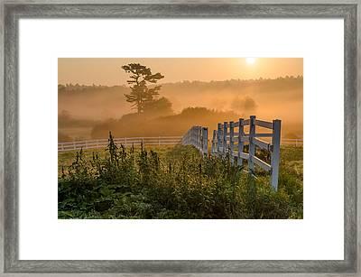Foggy Fence Framed Print