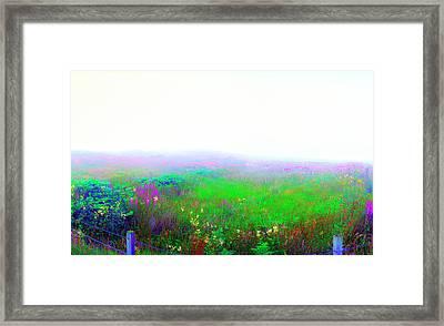 Foggy Flowers Framed Print