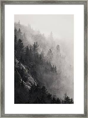 Framed Print featuring the photograph Foggy Mountain Forest by Ken Barrett