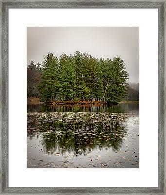 Foggy Island Reflections Framed Print