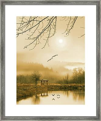 Foggy Lake And Three Couple Of Birds Framed Print