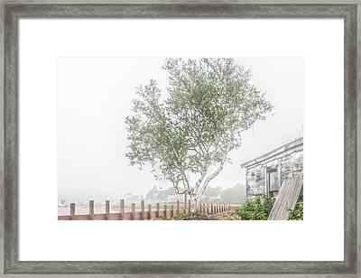 Foggy Morning At Camp Ellis Framed Print