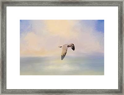 Foggy Morning At Sea Framed Print by Jai Johnson