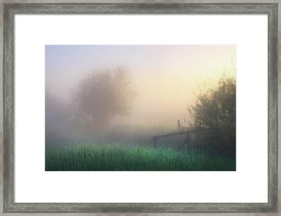 Framed Print featuring the photograph Foggy Morning by Dan Jurak