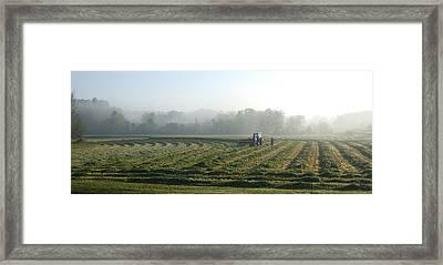 Foggy Morning Field 2 Framed Print by Janet  Telander