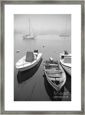 Foggy Morning In Cape Cod Black And White Framed Print by Matt Suess