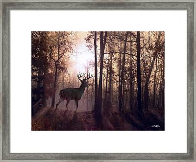 Foggy Morning In Missouri Framed Print