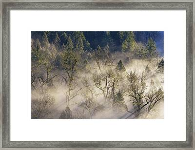 Foggy Morning In Sandy River Valley Framed Print by David Gn