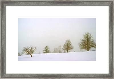 Foggy Morning Landscape 15 Framed Print by Steve Ohlsen