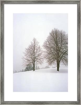 Foggy Morning Landscape 19 Framed Print by Steve Ohlsen