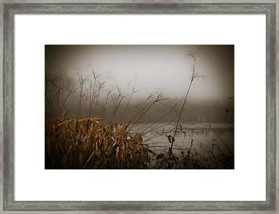 Foggy Morning Marsh Framed Print