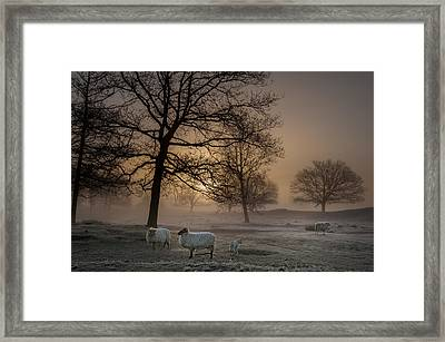 Foggy Morning Framed Print by Piet Haaksma