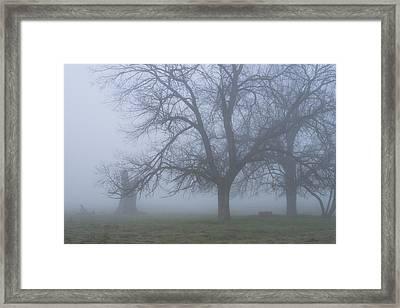 Foggy Morning Framed Print by Randy Bayne