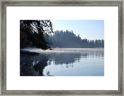 Foggy Morning Framed Print by Sergey and Svetlana Nassyrov