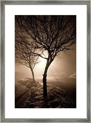 Foggy Night Framed Print by Elizabeth Richardson
