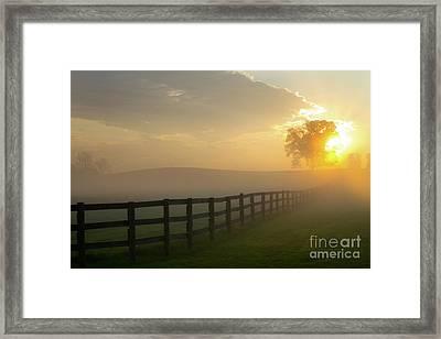 Foggy Pasture Sunrise Framed Print