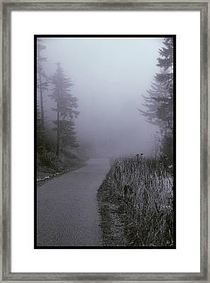 Foggy Path Clingman's Dome Framed Print by Dan Sproul