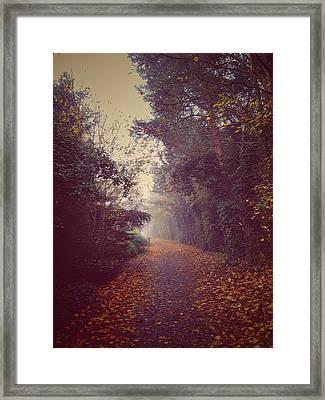 Foggy Framed Print