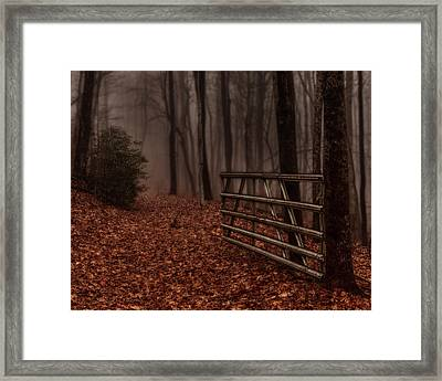 Foggy Trail Framed Print