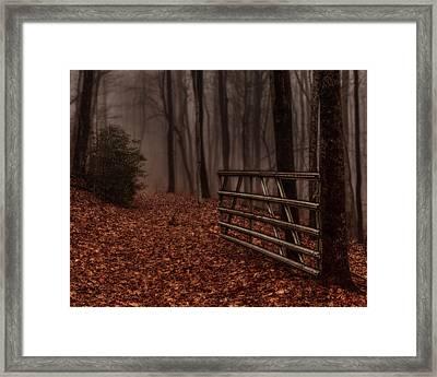 Foggy Trail Framed Print