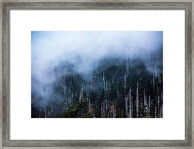 Foggy Tranquility Framed Print by Shelby Young