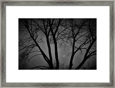 Foggy Winter's Night Framed Print by Rick Grossman