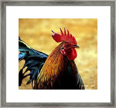 Foghorn I Framed Print