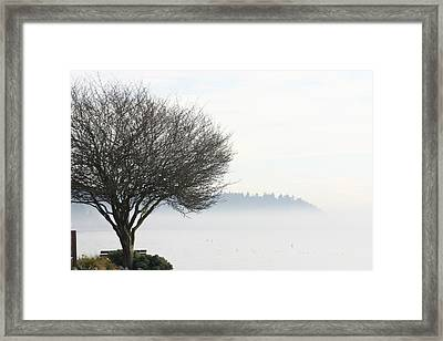 Fogscape Framed Print by Trudy Parman