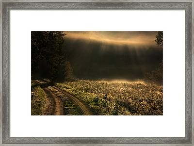 Fogy Morning Framed Print by Allan Wallberg