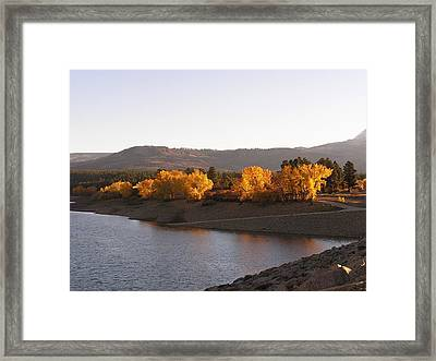 Foliage At Jackson Lake Framed Print