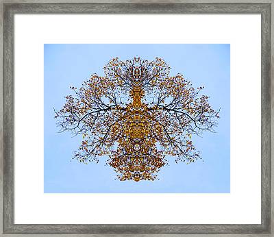 Foliage Creations 13 Framed Print