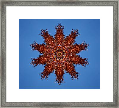 Foliage Creations 17 Framed Print