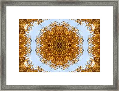 Foliage Creations 6 Framed Print