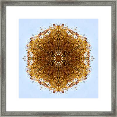 Foliage Creations 9 Framed Print