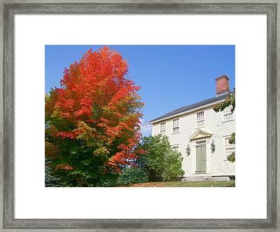 Framed Print featuring the digital art Foliage Peak by Barbara S Nickerson