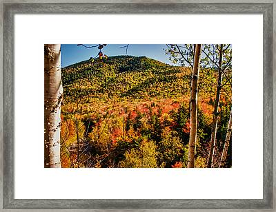 Foliage View From Crawford Notch Road Framed Print