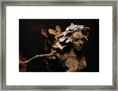 Foliated Victory Framed Print