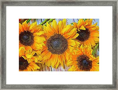 Folk Art Sunflowers Framed Print by Garry Gay